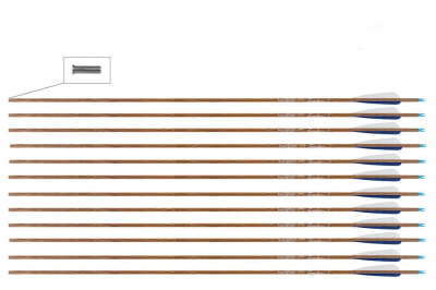 Buck trail karbonska strijela 33-1
